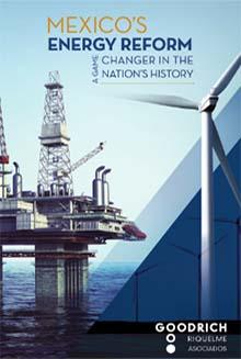 Energy Reform